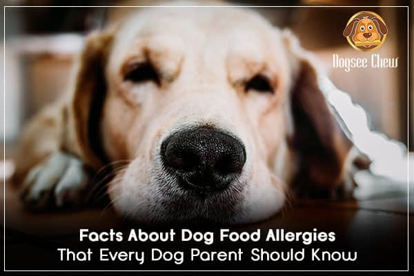fact-allergy_1